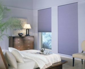 Cellular Shades Different Styles (6)