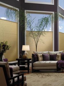 Cellular Shades Different Styles (7)