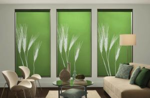 Persona By Comfortex ( Roller Shades) (1)