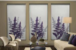 Persona By Comfortex ( Roller Shades) (2)