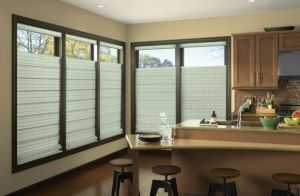 Persona By Comfortex ( Roller Shades) (3)