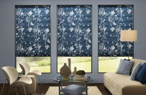 Persona By Comfortex ( Roller Shades) (7)