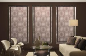 Persona By Comfortex ( Roller Shades) (9)