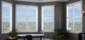 Planation Shutters (20)