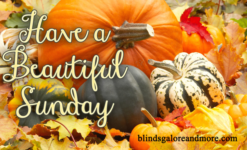 Image result for have a great sunday autumn images